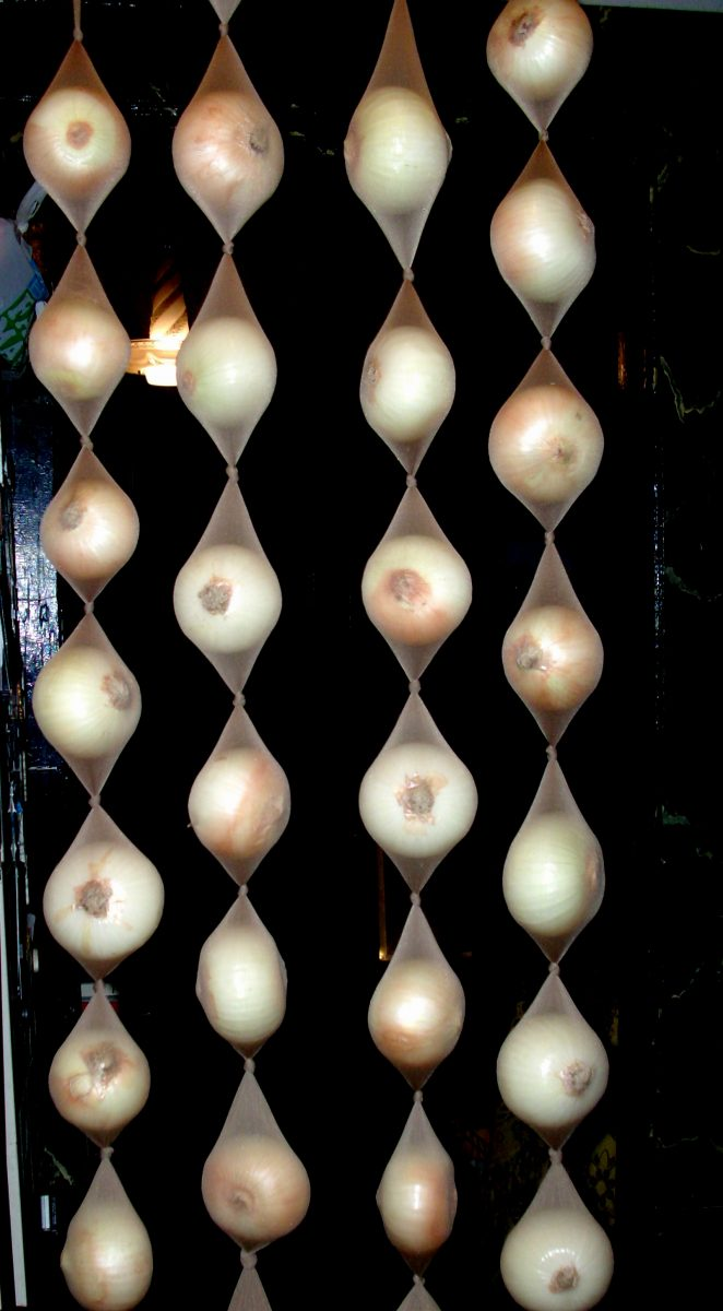 Storing in pantyhose onions