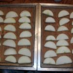 6 Vidalia Onions sliced for drying