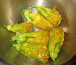 Squash blossoms stuffed and ready to bread