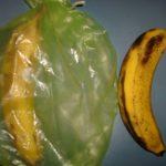 Green Bag Banana Test, Day 8
